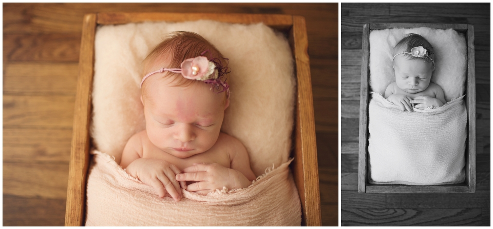 Michgian newborn photographer